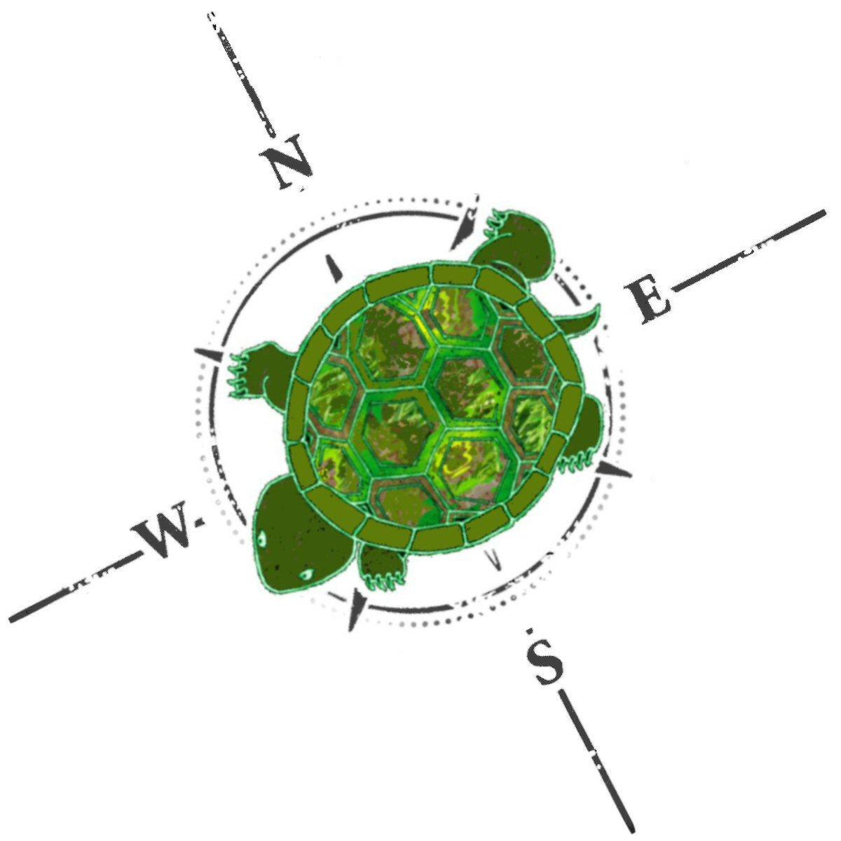 TurtleHerding